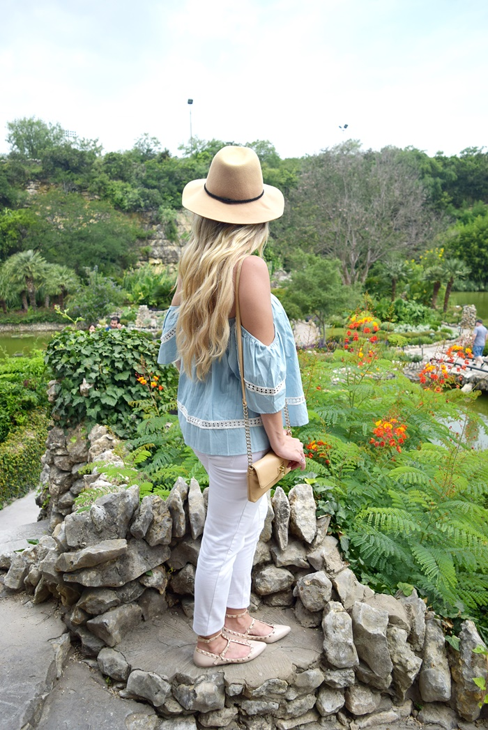 tea garden13